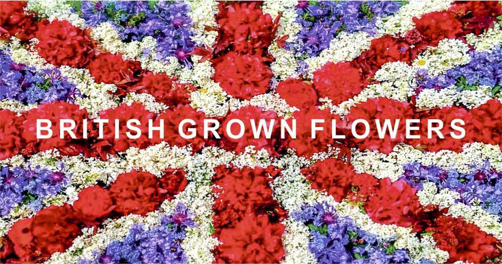 british grown flowers material